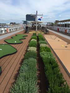 Shuffle board, mini golf, and herbs on Deck 4 (The Sun Deck)