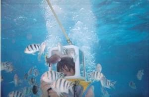 Helmet Diving in Bora Bora